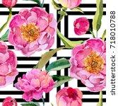 wildflower peonies flower... | Shutterstock . vector #718010788