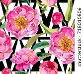 wildflower peonies flower... | Shutterstock . vector #718010806