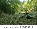 dry leaves  trees and rocks in... | Shutterstock . vector #718035112