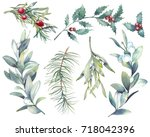 watercolor christmas plants set.... | Shutterstock . vector #718042396