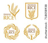 orange brown paddy rice premium ... | Shutterstock .eps vector #718058938