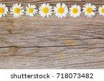 border of daisy chamomile...   Shutterstock . vector #718073482