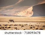 Namib Desert  Sand Dunes At...
