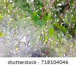 green leaves concept   abstract ...   Shutterstock . vector #718104046