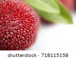 red bayberry | Shutterstock . vector #718115158