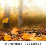 beautiful autumn landscape with ... | Shutterstock . vector #718135516