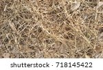 dry leaf background | Shutterstock . vector #718145422