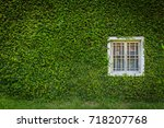 White Window On Green Wall With ...