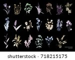 collection of beautiful wild... | Shutterstock .eps vector #718215175