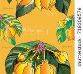 ylang ylang vector image... | Shutterstock .eps vector #718306576