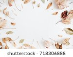 frame made of dry autumn leaves.... | Shutterstock . vector #718306888