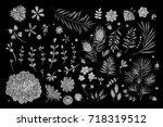 white lace. set of flowers.... | Shutterstock .eps vector #718319512