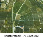 aerial view of green fields... | Shutterstock . vector #718325302