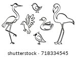 Set Of Birds Sketched With Ink. ...
