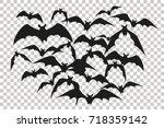 Black Silhouette Of Flock Of...