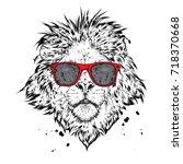 a beautiful lion. vector... | Shutterstock .eps vector #718370668