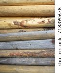lodge pole pine pile   Shutterstock . vector #718390678