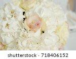lovely fresh roses vivid...   Shutterstock . vector #718406152