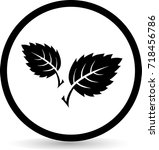 leaf icons. vector. eps 10 | Shutterstock .eps vector #718456786