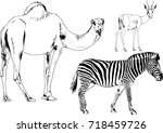 set of vector drawings on the... | Shutterstock .eps vector #718459726