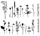 vector set of wild plants... | Shutterstock .eps vector #718475875