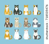 sitting cats of various... | Shutterstock .eps vector #718535476
