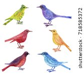 watercolor drawing bird  hand... | Shutterstock . vector #718585372