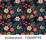 floral background in vintage...   Shutterstock .eps vector #718684795