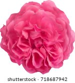illustration with single pink... | Shutterstock .eps vector #718687942