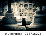 scary cat on a cemetery ... | Shutterstock . vector #718716226