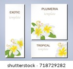 tropical flowers of plumeria on ... | Shutterstock . vector #718729282