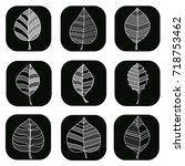 leaf logo | Shutterstock .eps vector #718753462