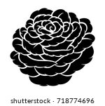 flower rose  black and white.... | Shutterstock .eps vector #718774696