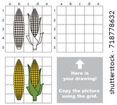 copy the picture using grid... | Shutterstock .eps vector #718778632