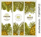 pineapple fruit banner... | Shutterstock .eps vector #718936912