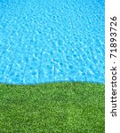 Fresh Grass Beside The Blue...