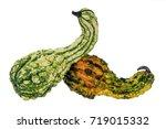 Colorful Ornamental Pumpkins...