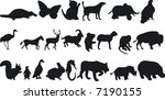 illustration of animal... | Shutterstock .eps vector #7190155