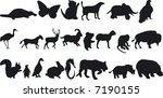 illustration of animal...   Shutterstock .eps vector #7190155