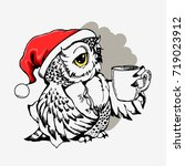 cute christmas owl with cup of... | Shutterstock .eps vector #719023912
