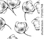 vector hand drawn flower... | Shutterstock .eps vector #719181748