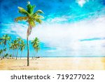 untouched tropical beach in sri ... | Shutterstock . vector #719277022