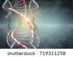 dna structure digital... | Shutterstock . vector #719311258