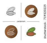 cardamom icon. flat design ...   Shutterstock .eps vector #719320225