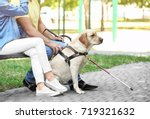 young woman and blind man with... | Shutterstock . vector #719321632