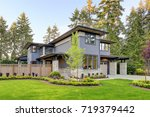 luxurious new home with curb... | Shutterstock . vector #719379442