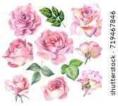 Stock photo set of pink roses watercolor 719467846