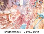 colorful background. bright ... | Shutterstock . vector #719671045