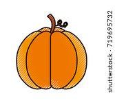 autumn seasonal pupmkin harvest ... | Shutterstock .eps vector #719695732