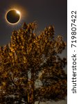 Small photo of Amazing scientific natural phenomenon. The Moon covering the Sun. Total solar eclipse with diamond ring effect glowing on sky above pine tree. Serenity nature background.
